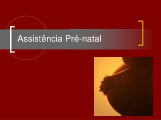 Assistência pré-natal