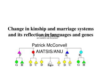 Change in kinship and marriage systems and its reflection in ...