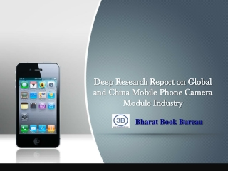 2013 Deep Research Report on Global and China Mobile Phone C