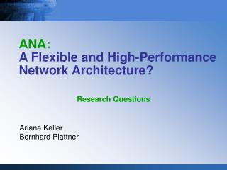 ANA: A Flexible and High-Performance Network Architecture