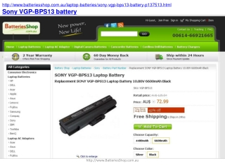 How to Find the Best Sony VP-BPS13 Battery on the Internet?