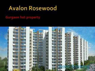 Avalon Rosewood