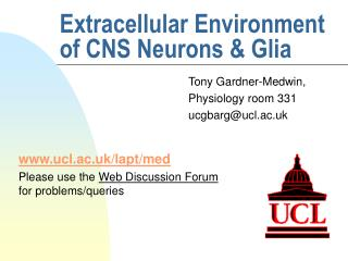 Extracellular Environment of CNS Neurons  Glia