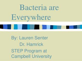 Bacteria are Everywhere