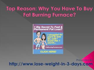buy fat burning furnace