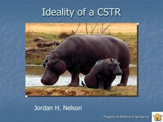 Ideality of a CSTR