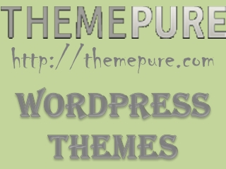 The basic factoids of WordPress theme