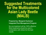 Suggested Treatments for the Multicolored Asian Lady Beetle MALB