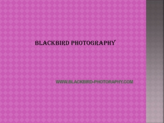 Blackbird Photography - Atlanta Wedding Photographer