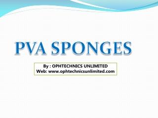 PVA Triangular Spear Sponge