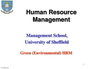 Green HR Processes at firm 1