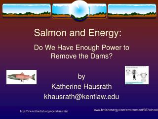 Salmon and Energy: