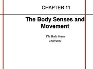Movement basal ganglia cerebellum