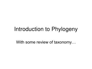 Introduction to Phylogeny