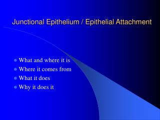Junctional Epithelium  Epithelial Attachment