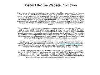 website promotion package
