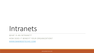 Intranets in Business