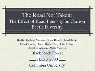 The Road Not Taken: The Effect of Road Intensity on Carrion Beetle Diversity