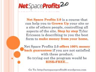 net space profits 2.0, local marketing, earn money from home