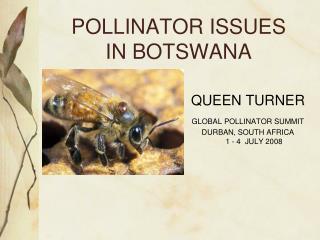 POLLINATOR ISSUES  IN BOTSWANA
