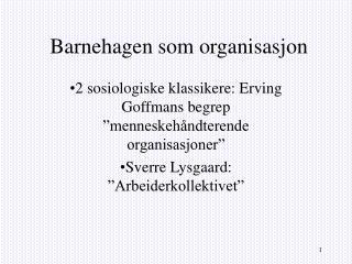 Barnehagen som organisasjon