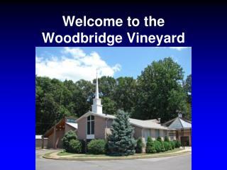 Welcome to the Woodbridge Vineyard