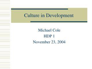 Culture in Development