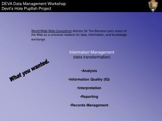 Information Management data transformation