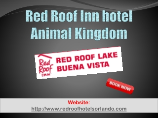 Red Roof Inn hotel Animal Kingdom