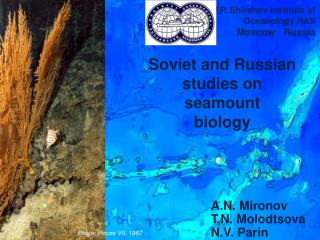 Soviet and Russian studies on seamount biology
