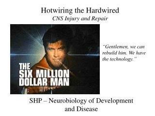 Hotwiring the Hardwired CNS Injury and Repair