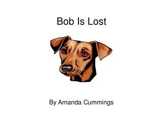 Bob Is Lost