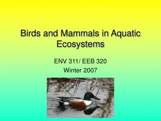 Birds and Mammals in Aquatic Ecosystems