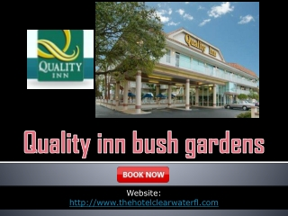 Quality inn bush gardens
