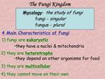 Fungi Kingdom