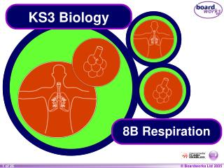 KS3 Biology