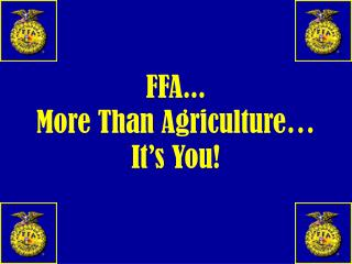 FFA... More Than Agriculture