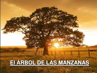 El  RBOL DE LAS MANZANAS