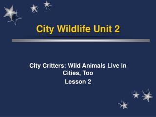 City Wildlife Unit 2