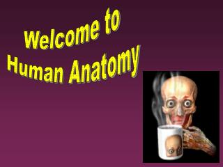 Sectional Anatomy and Clinical Technology