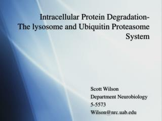 Intracellular Protein Degradation-      The lysosome and Ubiquitin Proteasome System