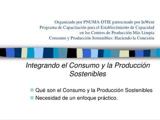 Organizado por PNUMA-DTIE patrocinado por InWent Programa de ...