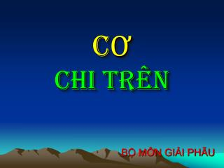 CO  CHI TR N