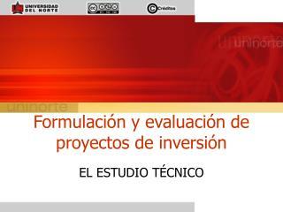 Formulaci n y evaluaci n de proyectos de inversi n
