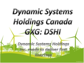 Dynamic Systems Holdings Canada GXG: DSHI ready to deliver f