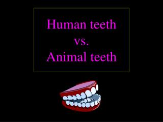 Human teeth vs. Animal teeth