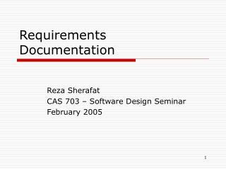 Requirements Documentation