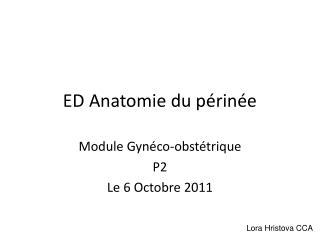 ED Anatomie du p rin e