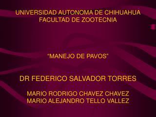 UNIVERSIDAD AUTONOMA DE CHIHUAHUA FACULTAD DE ZOOTECNIA      MANEJO DE PAVOS    DR FEDERICO SALVADOR TORRES  MARIO RODRI