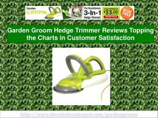 garden groom - professional hedge trimming can be affordable